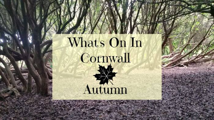 What's on In Cornwall