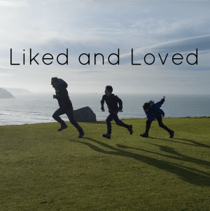 Things I Have Liked and Loved – January 2016