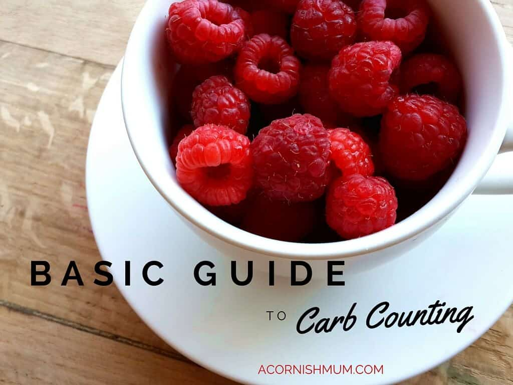 Basic Guide to Carb Counting