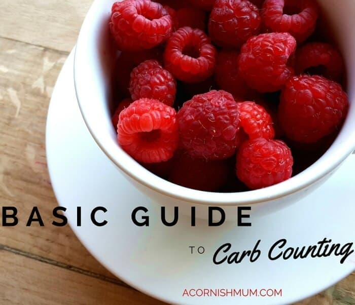 A Very Basic Guide to Carb Counting