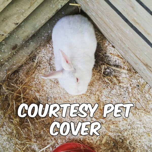 Sunlife Courtesy Pet Cover