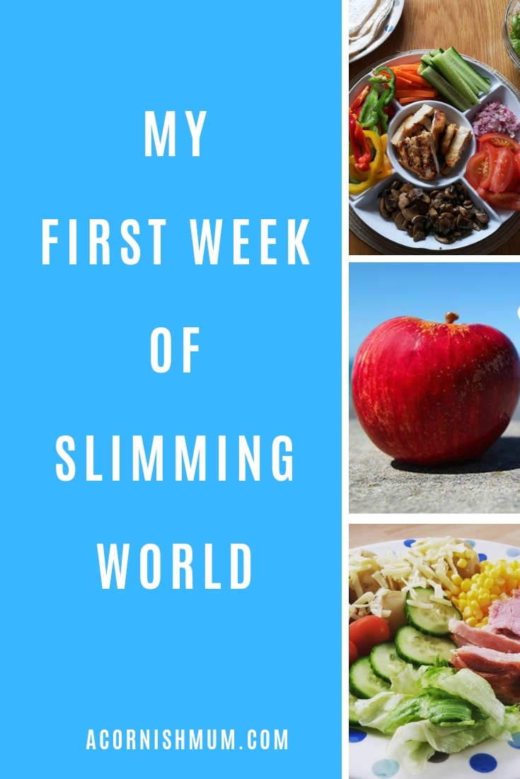 My first week of Slimming World and my weight loss pin