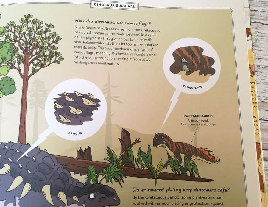 Explorer Dinosaurs book page