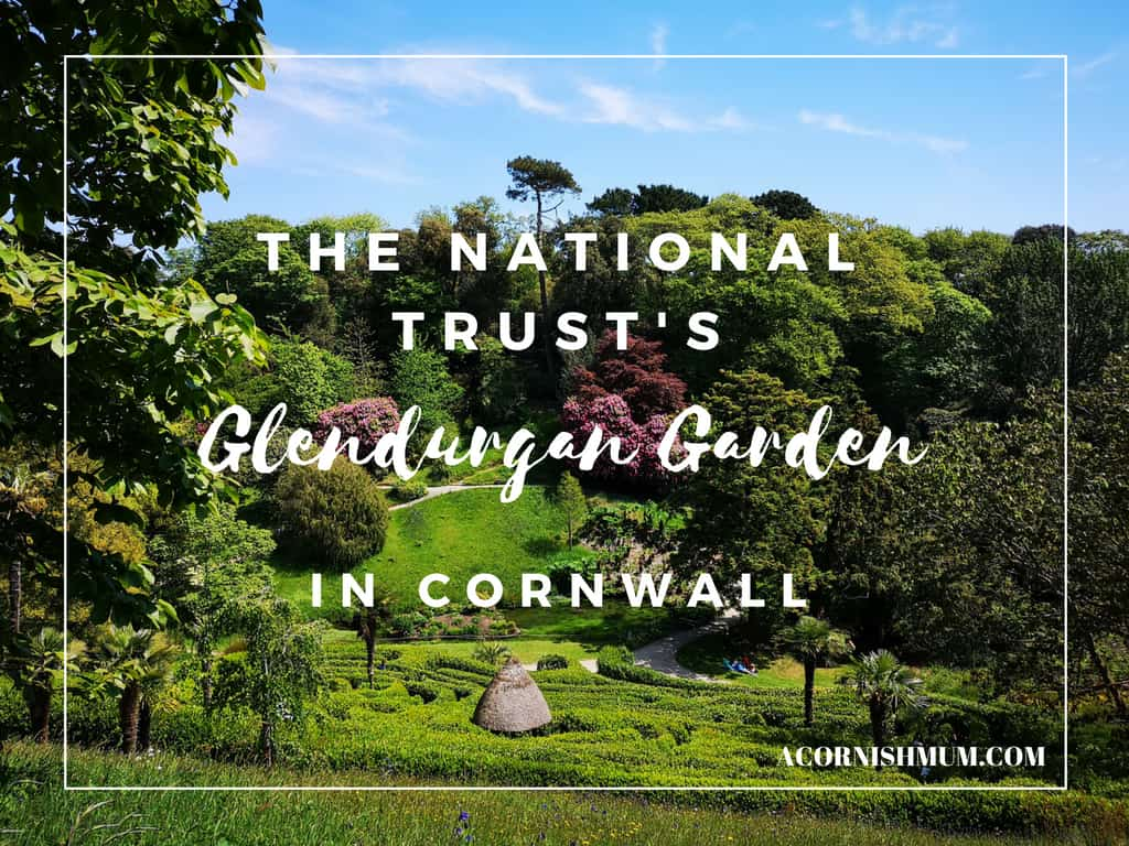 The National Trust Cornwall: Glendurgan Garden