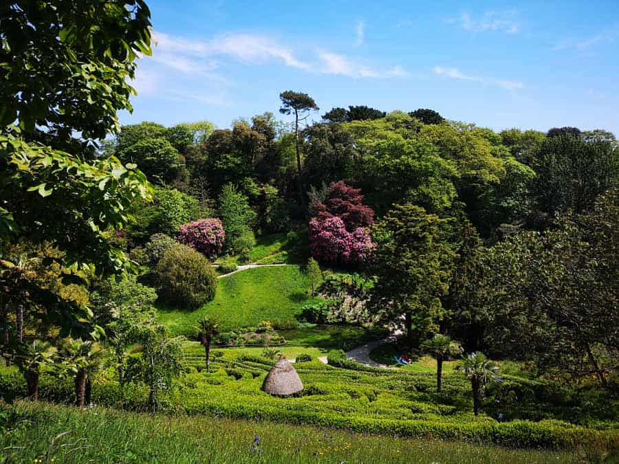 The maze at Glendurgan Garden Cornwall
