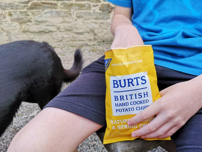 Burts Chips and Dog