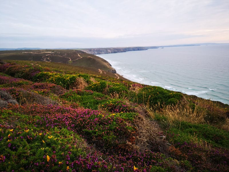 Top 5 Things to do in Cornwall This Winter