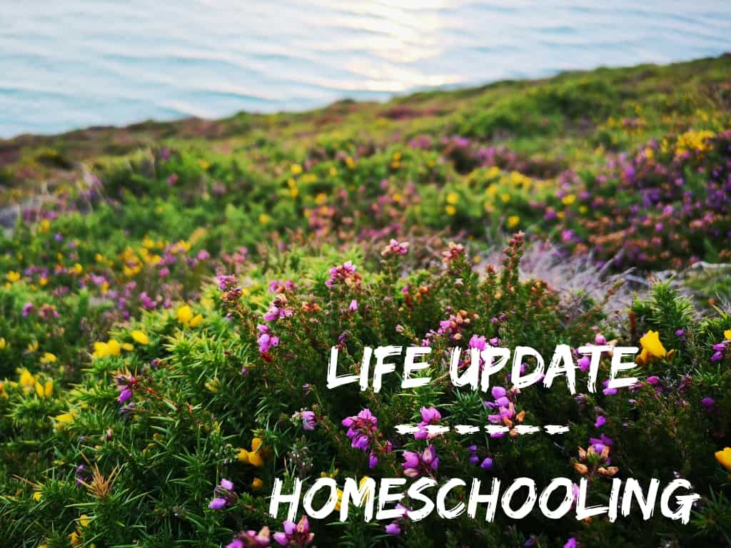 Life Update: Homeschooling