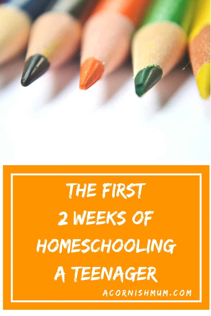 The first two weeks of homeschooling a teenager - A Cornish Mum