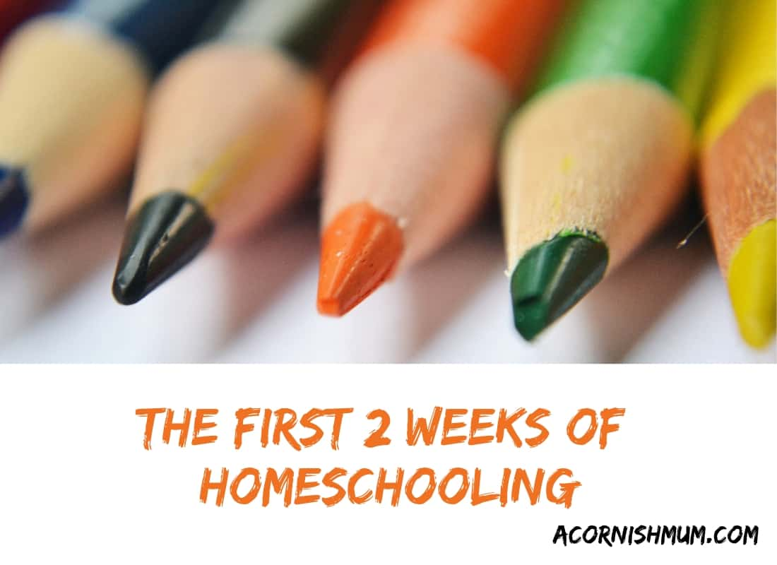 Homeschooling The First Two Weeks