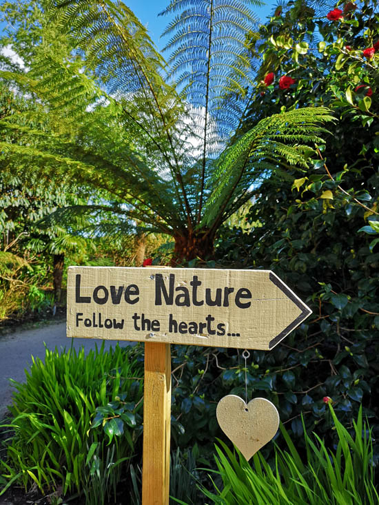 Love Nature walk at Lost Gardens of Heligan