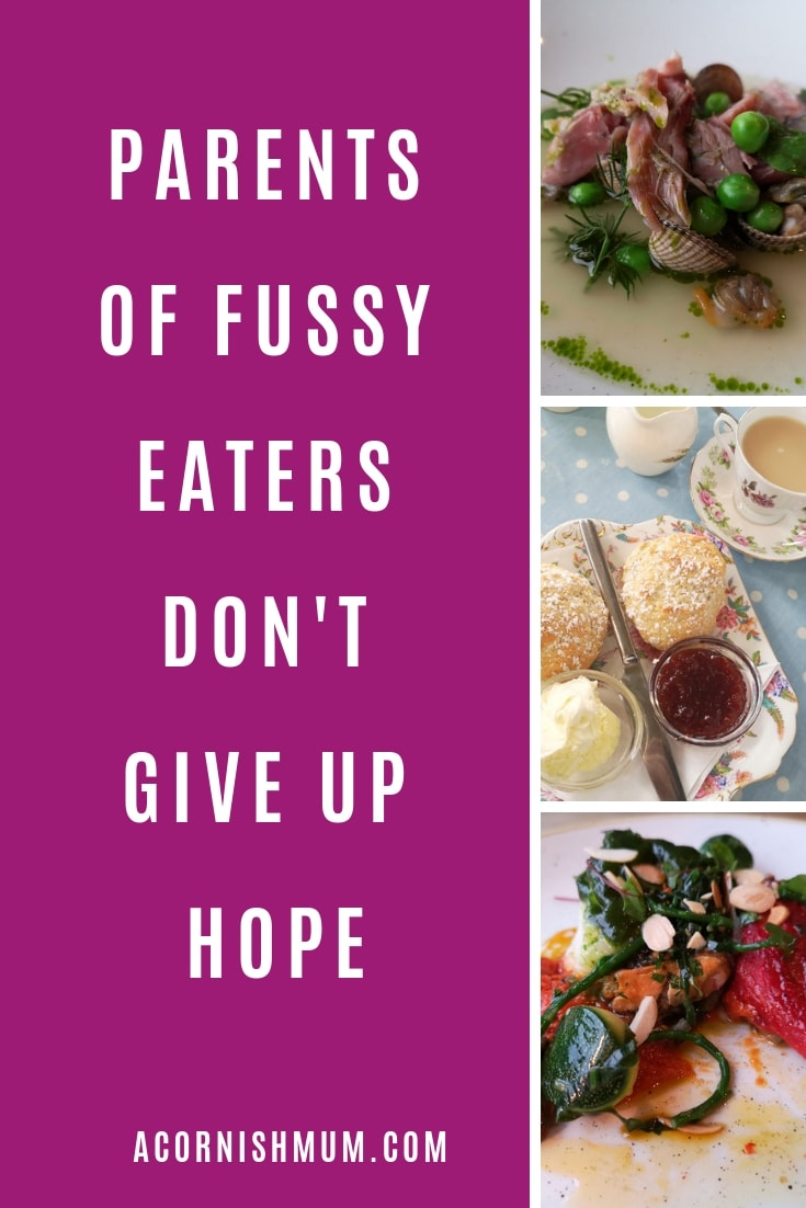 Parents of fussy eaters don't give up acornishmum