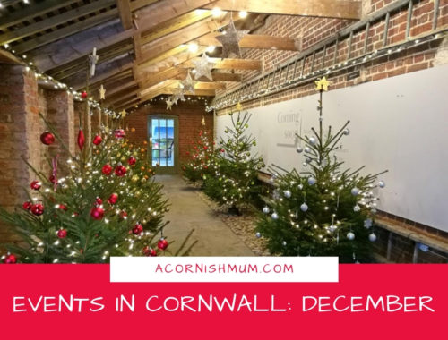 Events in Cornwall: What's On in Cornwall December