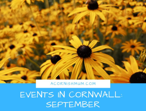 Events in Cornwall: What's On in Cornwall September