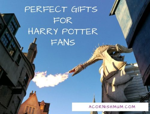 Perfect gifts for Harry Potter Fans - dragon pictured